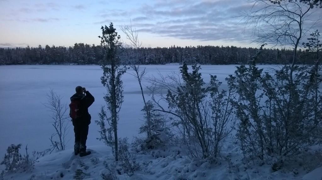 Pohjois-Espoon metsät virkistyskäyttöön – kiistellyt arvometsät osaksi kansallispuistoa